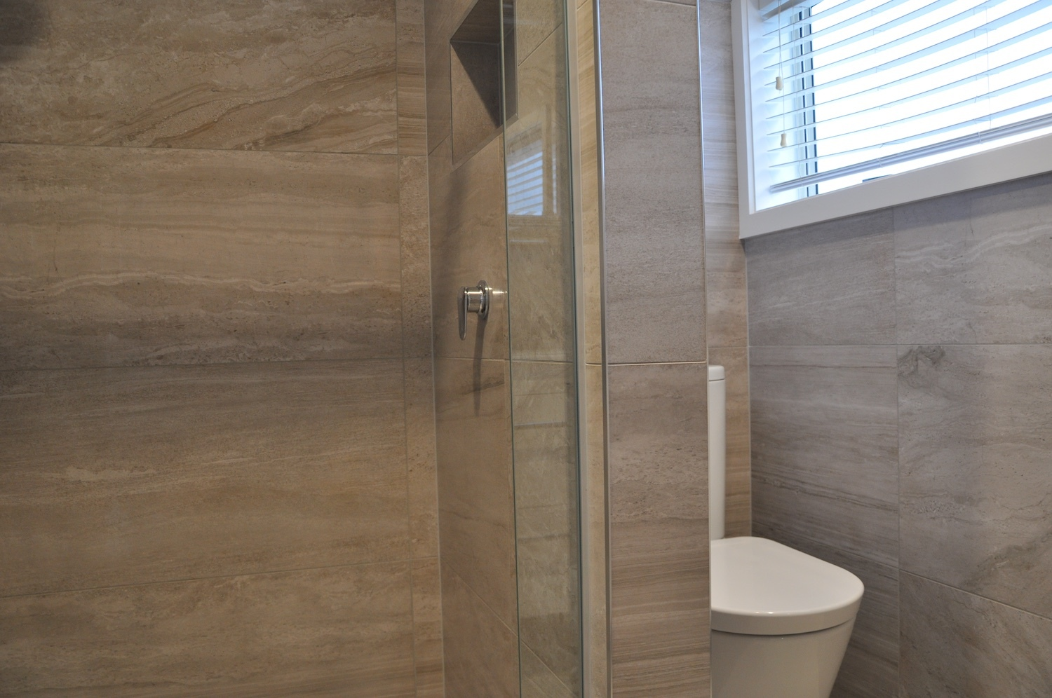 Ensuite shower shelf and toilet